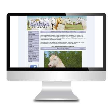 central alberta web development client portfolio websites 104